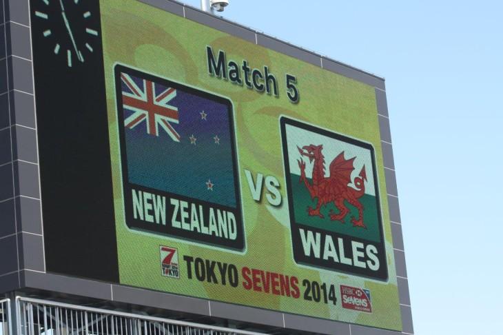 vs ウェールズ (4)