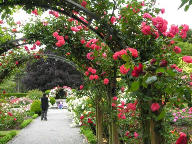 クライストチャーチ 植物園