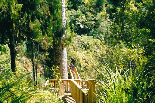 ワイタケレ自然公園