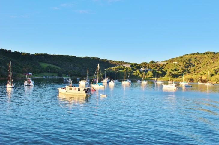 オークランドからワイヘキ島まで気軽に行ける「Fullers Ferry(フラーズ フェリー)」